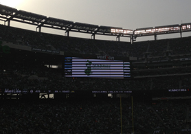 Photo of MetLife Stadium Jumbotron displaying the NJDA logo - Click to enlarge