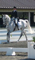 dressage picture - Click to enlarge