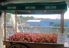 Photo of peach display at 08 Jersey Fresh Day on Battleship NJ - Click to enlarge