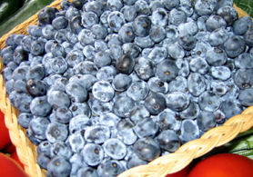 Photo of a basket of blueberries - Click to enlarge