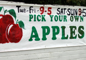 Photo of Pick Your Own Apples sign - Click to enlarge