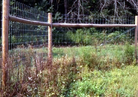 Photo of Deer Fencing on a Farm - Click to enlarge