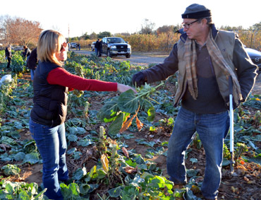Photo of Kristina Guttadora and Secretary Fisher gleaning Brussels sprouts