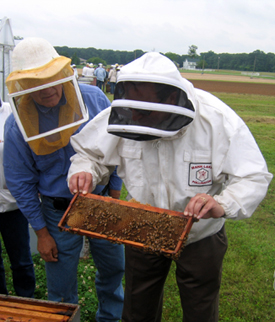 Photo of Secretary Fisher holding bee frame