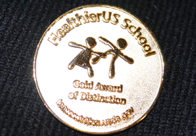 Photo of gold pin given to HUSSCA Gold Award winners - Click to enlarge