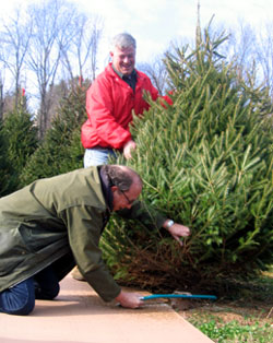Photo of Secretary Fisher and Chris Nicholson cutting down a tree