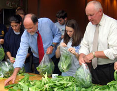 Photo of Governor Corzine and Secretary Kuperus bagging gleaned lettuce with FFA members - Click to enlarge