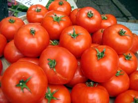 Photo of Jersey Tomatoes