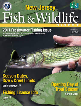 Njdep division of fish wildlife 2011 freshwater for Saltwater fishing license nj