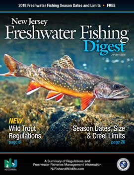 Njdep division of fish wildlife pdf segments of the for New jersey saltwater fishing regulations