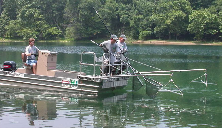 Njdep division of fish wildlife assessment and for Nj freshwater fishing