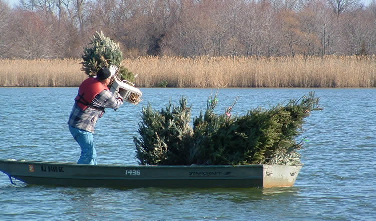 Njdep division of fish wildlife local lakes get home for Fishing lakes in nj