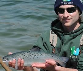 Salmon have a head start to trophy size in Tilcon Lake