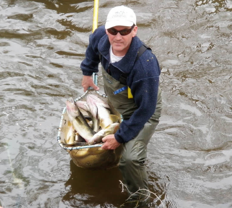 Njdep Division Of Fish Wildlife Fish Rescue At