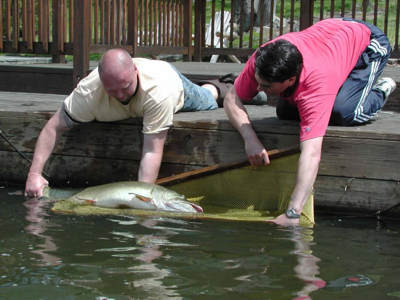 greenwood lake nj fishing bait fishing