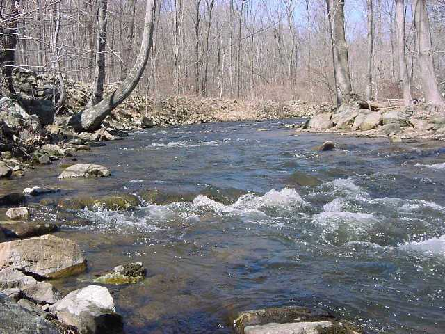 Public land hunting and fishing in virginia outdoor life for Hunt fish va