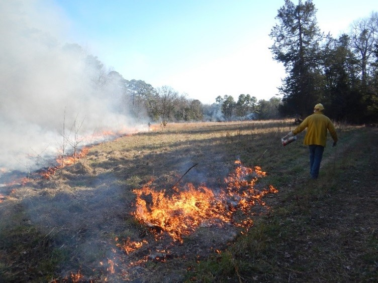 Seasonal Prescribed Burning Program