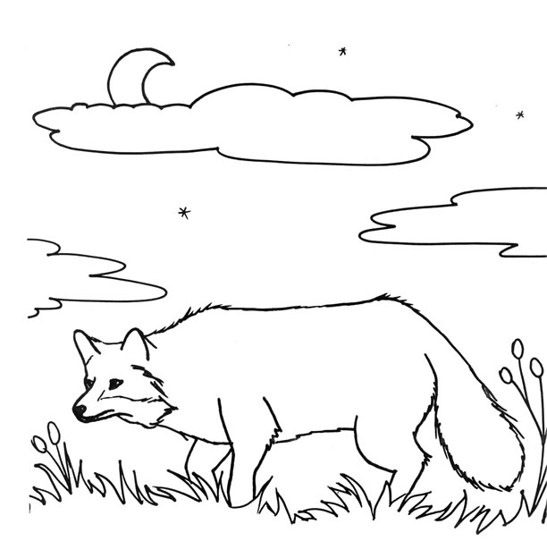 fort mott state park kittatinny valley hacklebarney - Passport Coloring Page