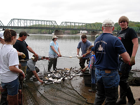Shad fishing in new jersey for Best fishing spots in nj