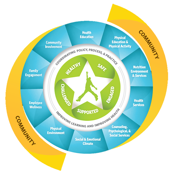 developing a coordinated school health approach A coordinated school health team (csht) is a coalition of individuals from  within and outside the school community  eight strategies for implementing a  coordinated school health approach  develop a plan—use the healthy  school.