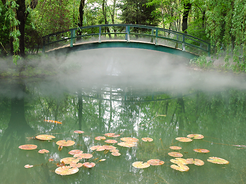 Mist surrounds an arched footbridge over the pond at the Grounds for Sculpture, Hamilton