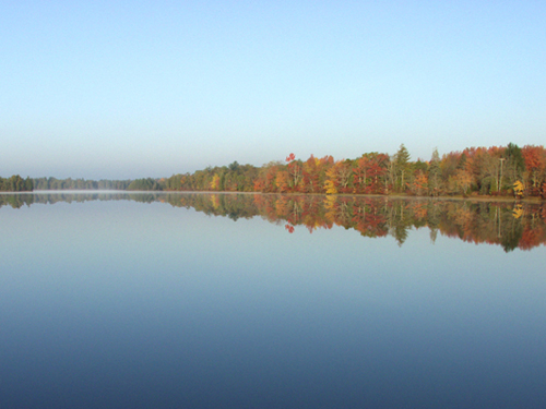 Batsto Lake in Wharton State Forest, Atlantic County