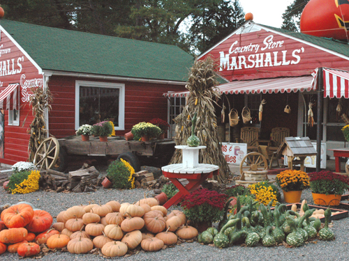 Marshalls' Country Store along Route 46 in Warren County
