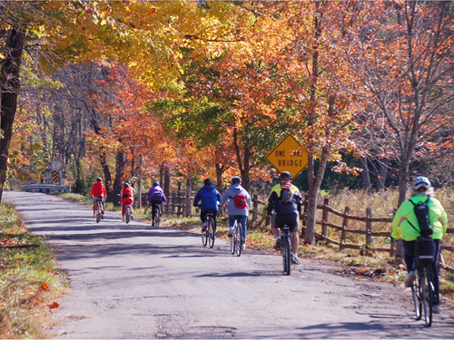 Bike riders enjoying a beautiful autumn day, Hunterdon County