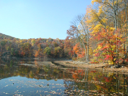 The colors of fall at Jenny Jump State Forest, Warren County