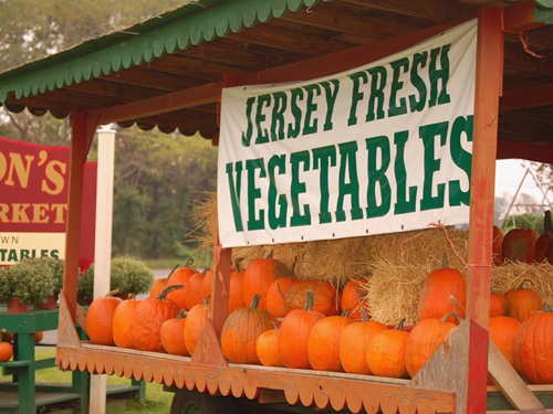 Jersey Fresh farm stand near Vincentown