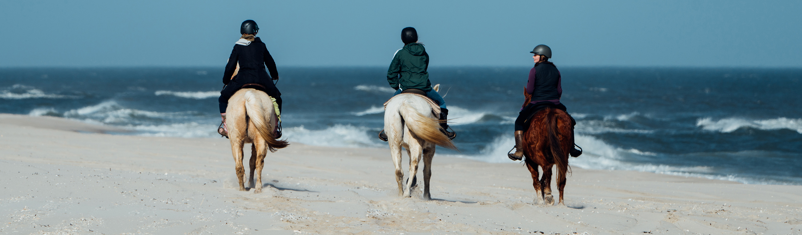 Horseback Riding at Island Beach State Park