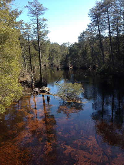 New Jersey Pinelands Commission Cmp Summary