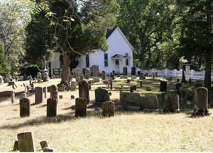 Southern Pinelands Natural Heritage Trail image